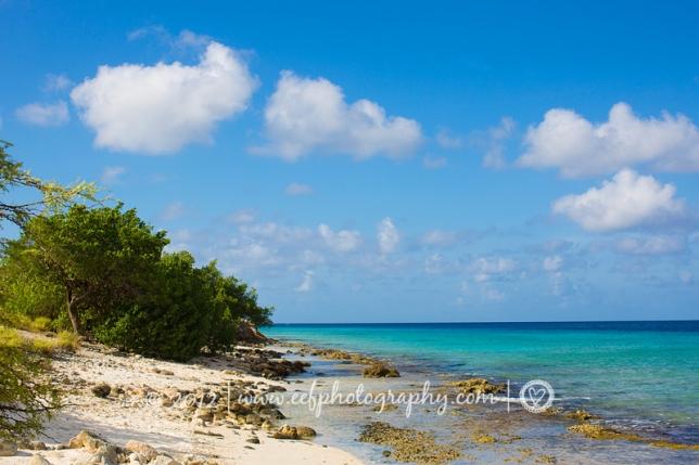 Amazing blue ocean, Bonaire beach Eef Ouwehand Commerciele fotografie